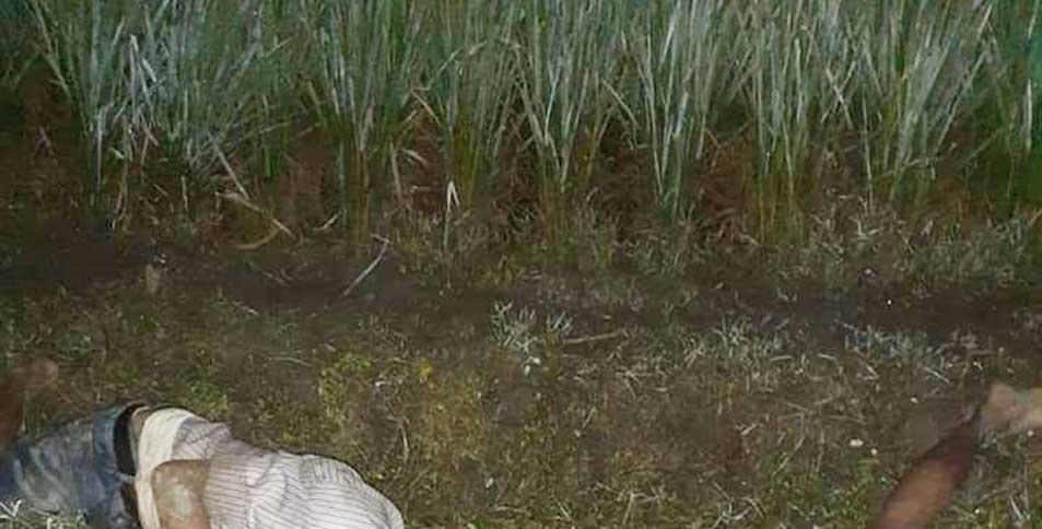 চাচা-ভাতিজার প্রাণ গেল ইঁদুর মারার ফাঁদে